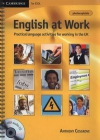 English at Work Practical language activities for working in the UK - Photocopiable + CD